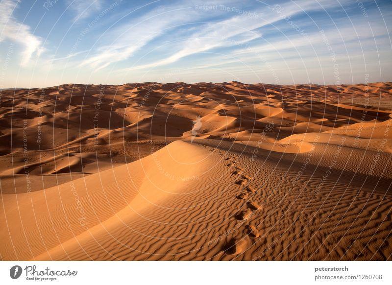 Spuren im Sand Natur Landschaft Wüste außergewöhnlich elegant exotisch fantastisch Ferne heiß oben trocken Stimmung Romantik schön Reinheit demütig Sehnsucht