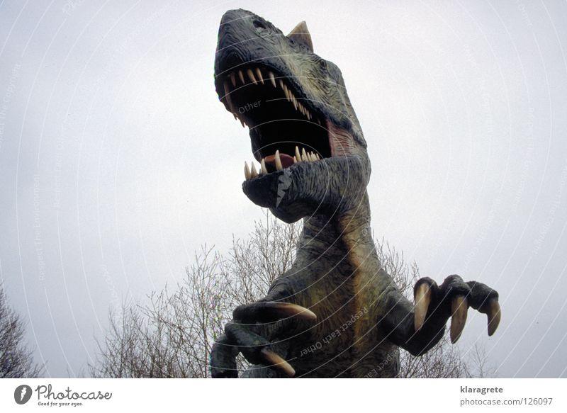 Großes Monster Dinosaurier Echsen Tier gefährlich Krallen Tierfigur drohen ausgestorben bedrohlich Tyrannosaurus Rex Maul Himmel Angst beißen Gebiss Urtier