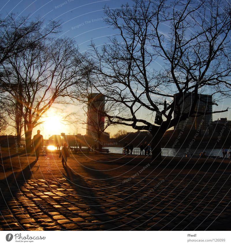 one and a half Gegenlicht Sonnenuntergang Dämmerung Abenddämmerung Stimmung Abendsonne Vater Silhouette Baum pflastern Spaziergang gehen Aktion Winter