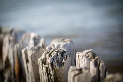 Buhne am Laboeer Strand I Natur alt blau Wasser Meer Landschaft Umwelt Küste Mauer Holz braun Aussicht Kultur planen Schutz