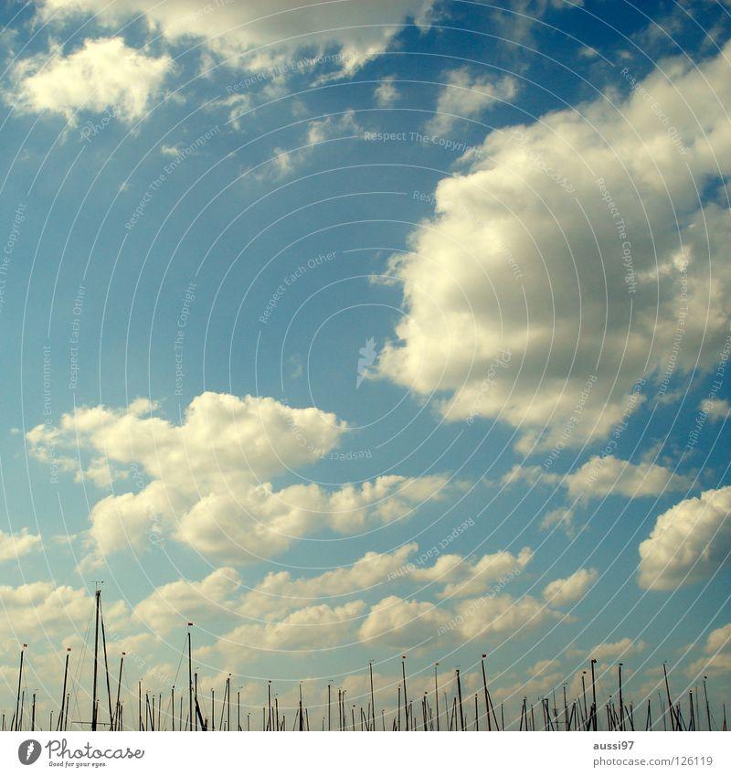 Marina Del Rey, Ca. Segelboot Jacht Jachthafen Wasserfahrzeug Schifffahrt Spielen Hafen Strommast Segeltuch Bootsmann Wind hissen Im Wasser treiben