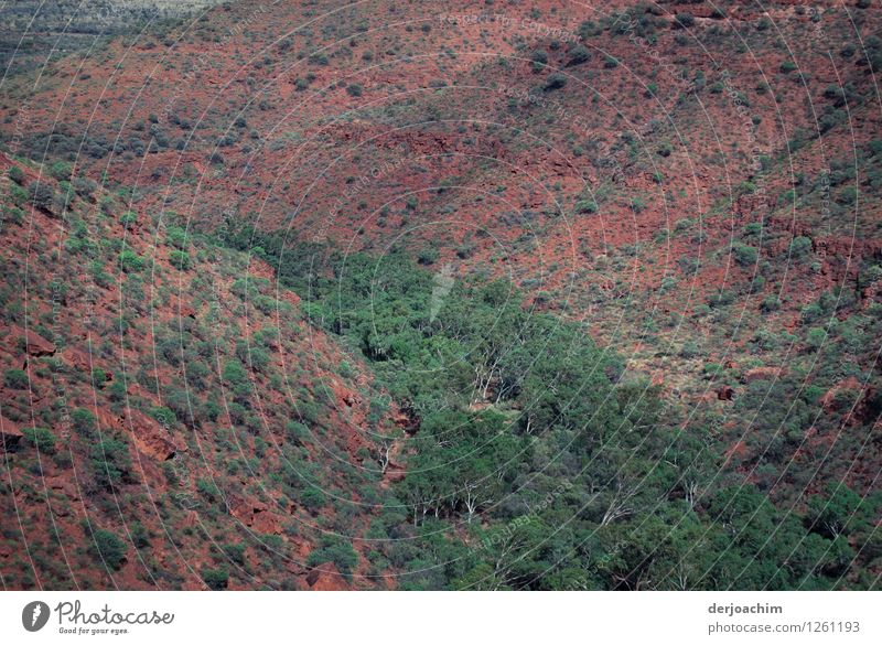 oben schön grün Sommer rot Umwelt Glück Stein Zufriedenheit Freizeit & Hobby Erde wandern Sträucher genießen Ausflug fantastisch