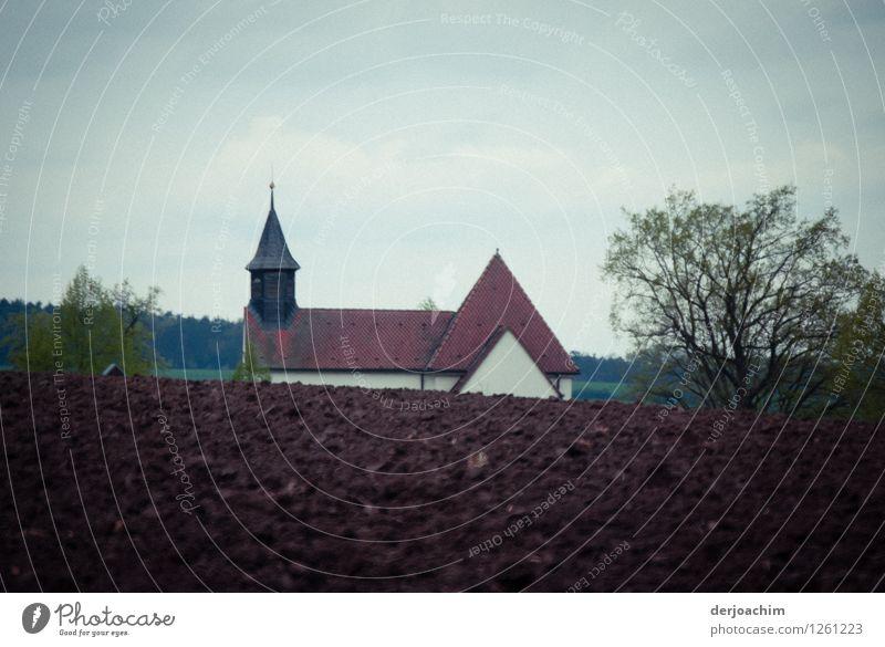 Ziel erreicht Design Wohlgefühl wandern Gasthof Umwelt Sommer Schönes Wetter Baum Feld Bayern Deutschland Gebäude Dach Kirche Stein beobachten entdecken