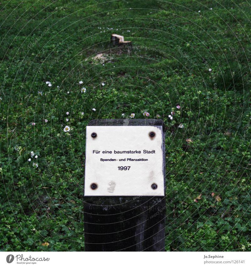 Für eine baumstarke Stadt! Natur grün Baum Wiese Gras Schilder & Markierungen Aktion Schriftzeichen Baumstamm Umweltschutz Klimawandel matt Bedeutung Grünfläche