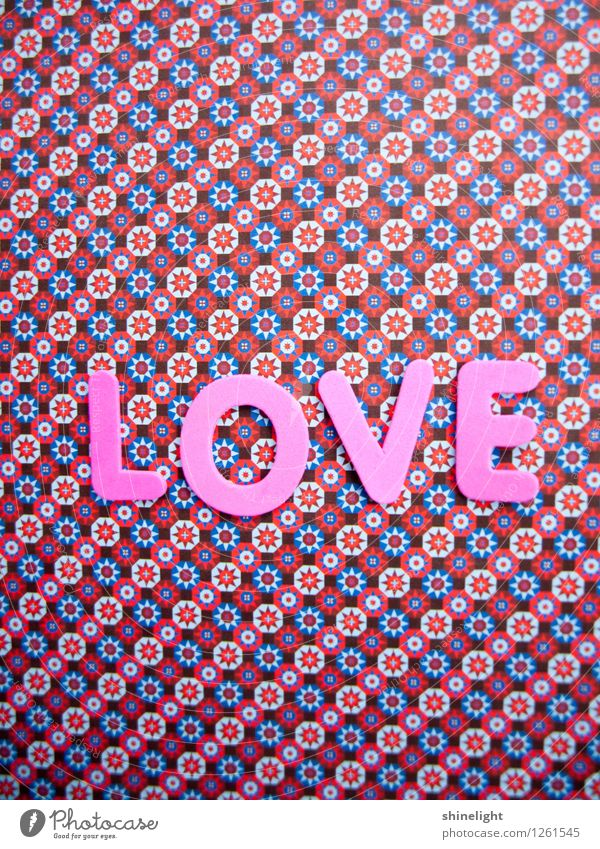 love Leben Liebe rosa Gefühle Stimmung Verliebtheit Liebeserklärung Liebesbrief Liebesgruß Liebling Liebesbeziehung Partnerschaft Liebesbekundung Liebesleben