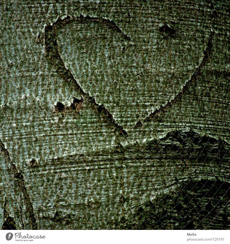 unvollendet Baum Liebe Paar Freundschaft Graffiti Herz Zeichen Symbole & Metaphern Baumstamm Partnerschaft Furche Hälfte Baumrinde Ehe Wandmalereien