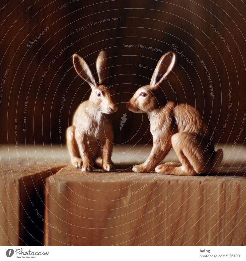 Tust Du es zum ersten mal, schau bitte kurz in unsere Hilfe Hase & Kaninchen Ostern Osterei hüpfen Känguruh Frühling Feld Tier Gruß Löffel Flüstern Hasenfigur