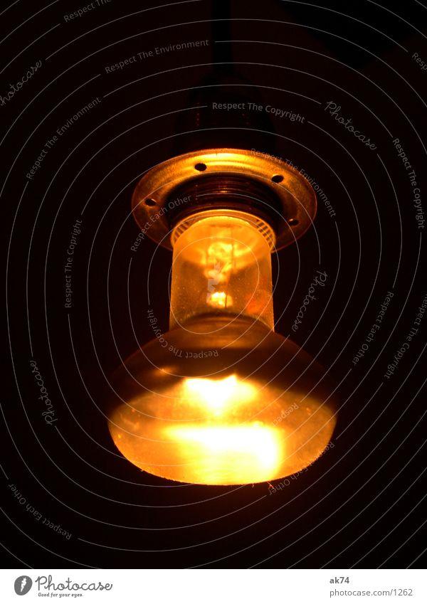 Glühbirne gelb orange Häusliches Leben Halterung