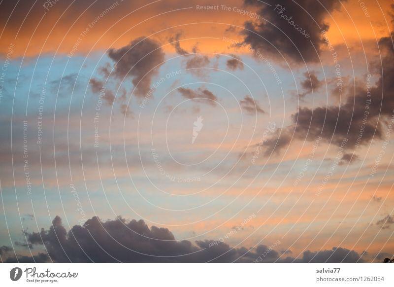 bunter Himmel blau Sommer Erholung ruhig Wolken Ferne dunkel Umwelt grau Freiheit Stimmung orange Wetter Luft leuchten ästhetisch
