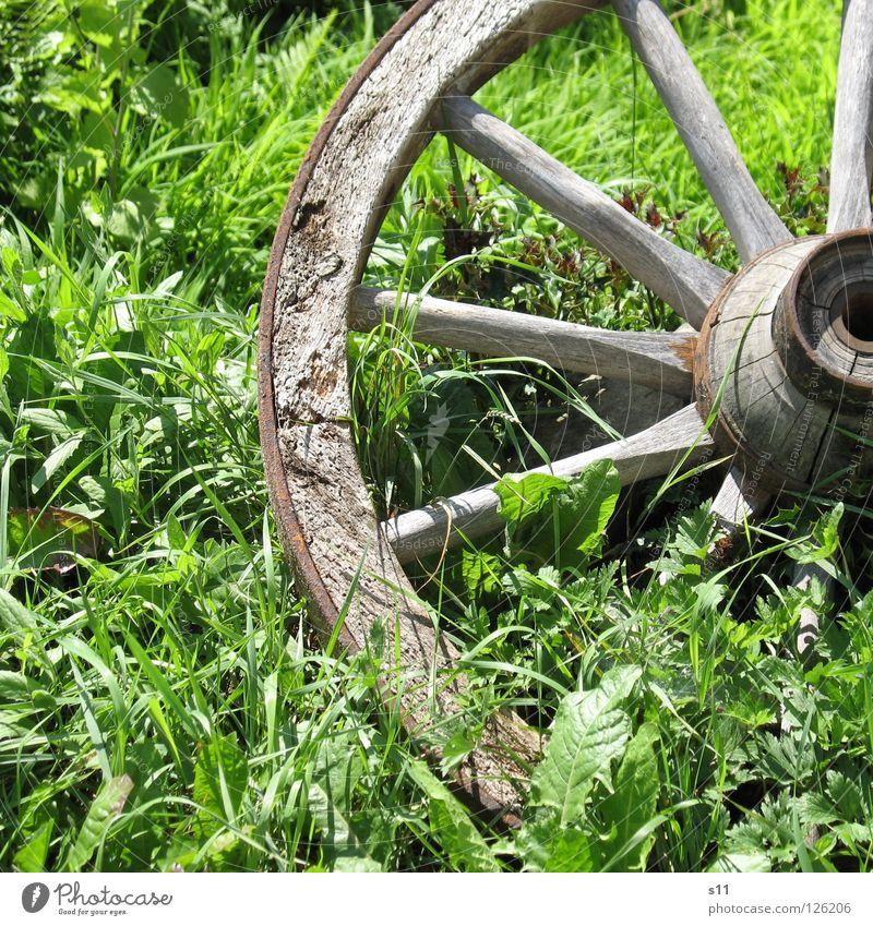 Altes Wagenrad alt grün Sommer Blatt Wiese Holz Gras braun Wetter Dekoration & Verzierung Kreis rund Mitte Quadrat Eisen Bogen