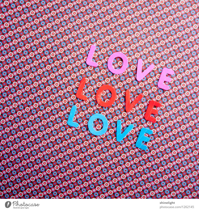 love blau rot Leben Liebe Gefühle Stimmung rosa Partnerschaft Verliebtheit Liebespaar Liebling Liebesbekundung Liebeserklärung Liebesbrief Liebesgruß