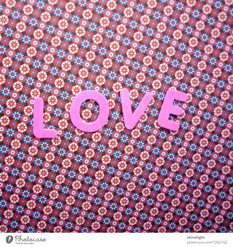 love Leben Liebe rosa Gefühle Stimmung Verliebtheit Liebeserklärung Liebesbrief Liebesgruß Liebling Farbfoto Textfreiraum oben Textfreiraum unten
