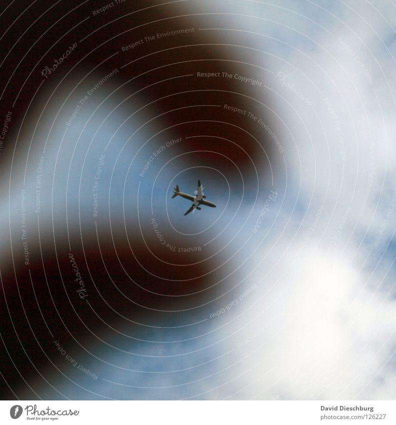 46 Flugzeuge die Stunde Hand Himmel blau rot Ferien & Urlaub & Reisen Wolken Graffiti orange Flugzeug groß Beginn Finger Luftverkehr Flügel Spielzeug fangen