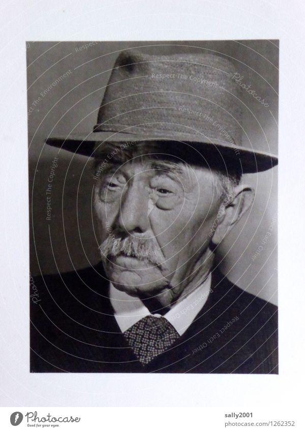 Sonntagsportrait... maskulin Männlicher Senior Mann Großvater Leben Gesicht 1 Mensch 60 und älter Anzug Hut Bart Oberlippenbart alt ästhetisch authentisch