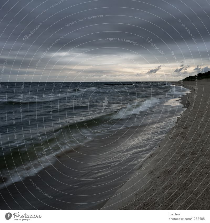 Baltique Natur Landschaft Sand Luft Wasser Himmel Wolken Gewitterwolken Horizont Sonnenaufgang Sonnenuntergang Wetter schlechtes Wetter Wind Baum Wellen Küste
