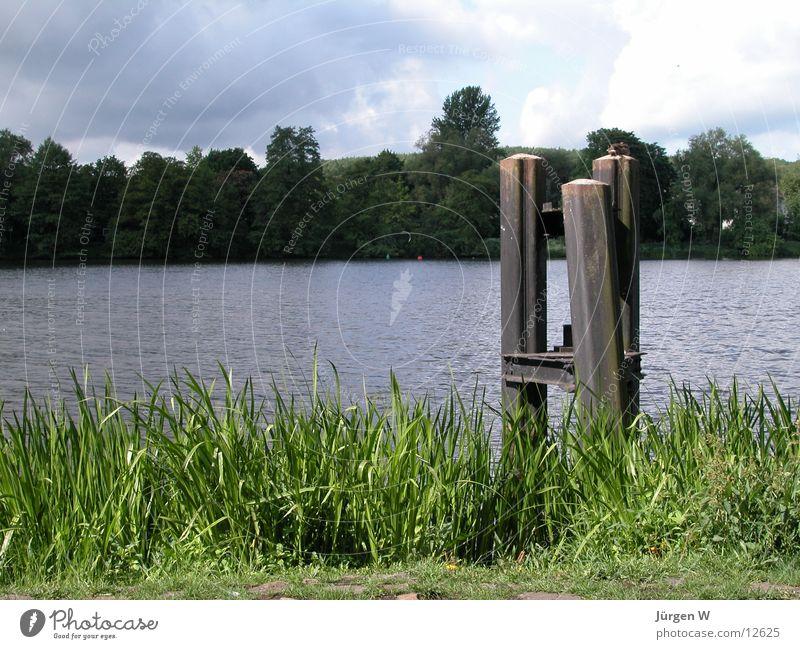 Seeufer Wasser Himmel blau ruhig Wolken Ernährung Gras See Küste Anlegestelle Dock