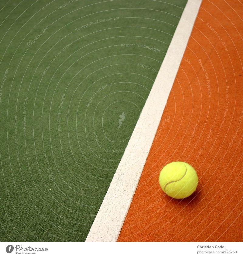Davis Cup Italien grün weiß Winter gelb Sport Spielen springen Linie orange Freizeit & Hobby Geschwindigkeit Ball Netz Italien Lagerhalle Teppich