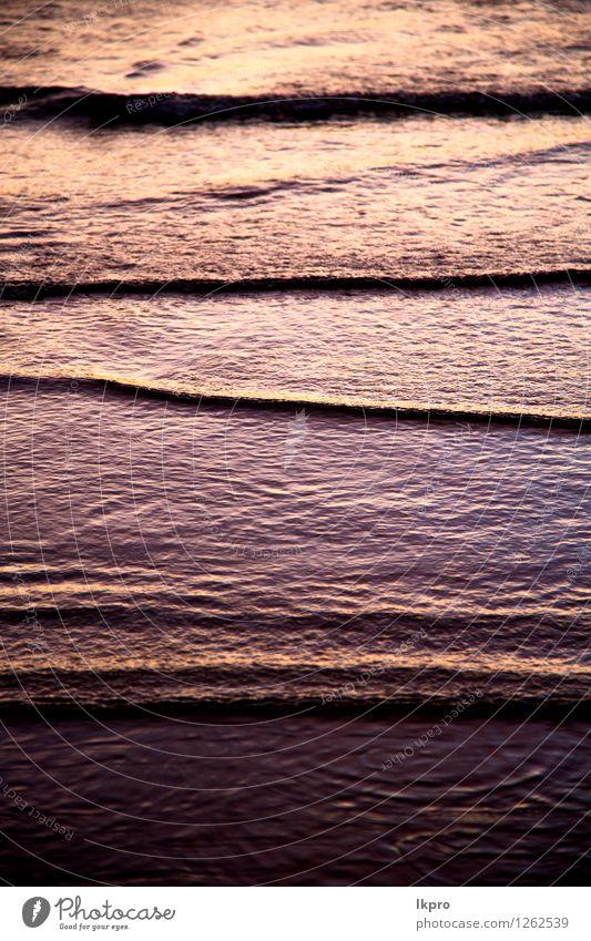 in Thailand-Wasser-Südchinameer Natur Ferien & Urlaub & Reisen Farbe Sommer Strand schwarz gelb Küste Freiheit Stein braun Felsen Sand Tourismus dreckig Insel