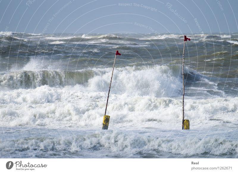 Meer Umwelt Natur Landschaft Urelemente Wasser Himmel Sommer Schönes Wetter Wind Wellen Küste Strand Nordsee Brandung Sturm Gischt Schwimmen & Baden wild