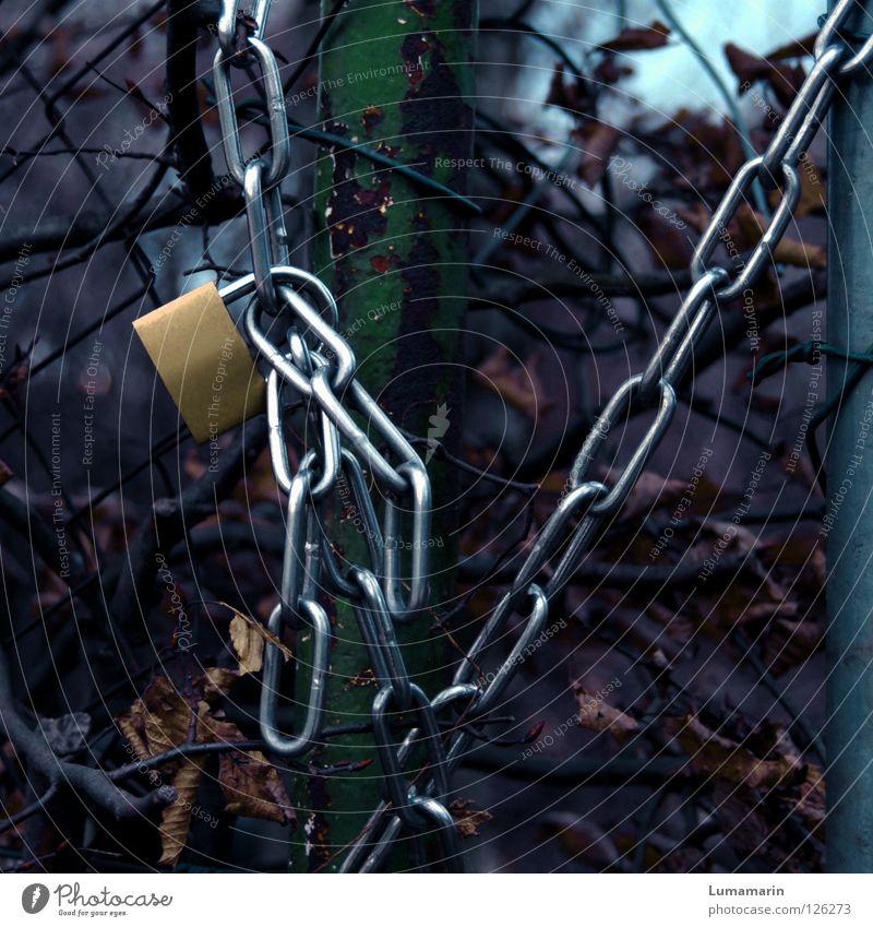 no way Winter Blatt dunkel Garten Landschaft Metall glänzend leer Sicherheit Schutz Burg oder Schloss verfallen Verbindung Zaun Kette Barriere
