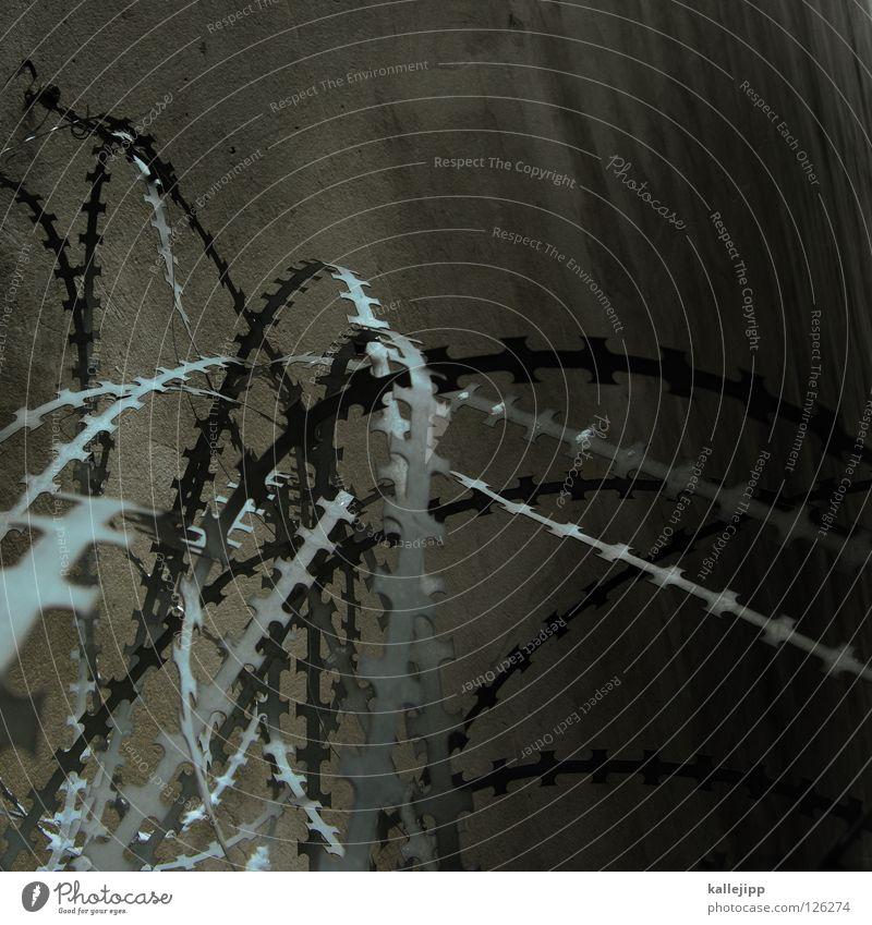 rühr mich nicht an Mauer Angst Sicherheit Spitze Schutz geheimnisvoll Frieden Zaun Grenze Krieg kämpfen Draht Verbote Panik Scharfer Gegenstand