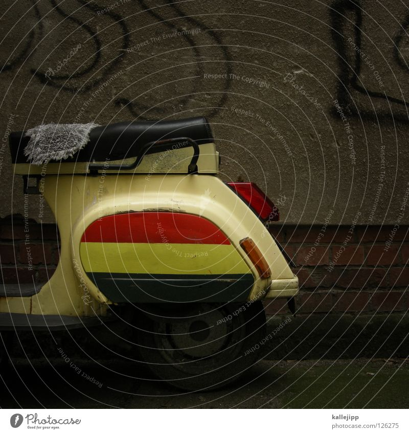 senegaltours Kleinmotorrad Schwalben Oldtimer fahren Wachstum Parkplatz Feinstaub Umwelt Landschaftsformen Liegewiese Vorgarten Erholungsgebiet Freizeit & Hobby