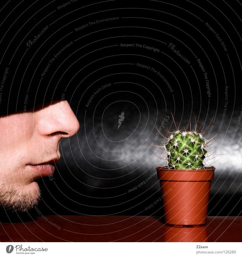 Mein kleiner grüner Kaktus Mütze schwarz Bart Mann Pflanze rot Selbstportrait Tisch verkehrt lustig verrückt Lücke glänzend dunkel auchen geschlossen Gesicht