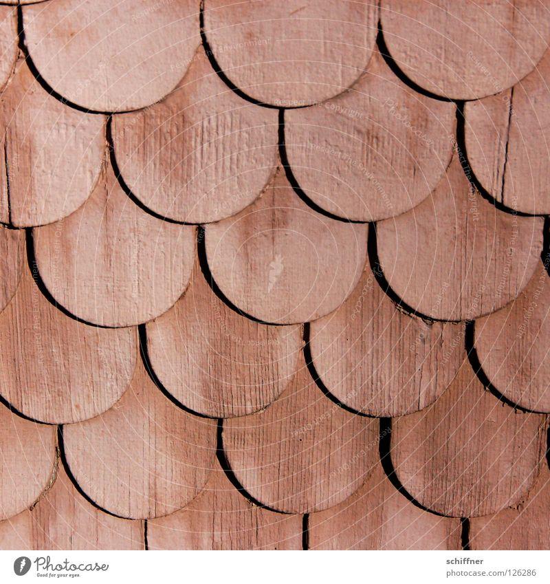 Holzschuppen Scheune Dachziegel Fassadenverkleidung Wandverkleidung Muster Hintergrundbild Handwerk Schuppenmuster Holzschindel Dachverkleidung Schindeldach