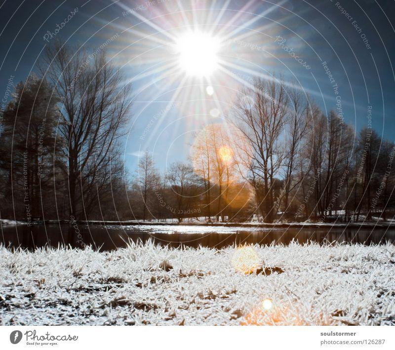 Sonne Infrarotaufnahme weiß Farbinfrarot Personenzug schwarz Wolken Gras Wegrand Wiese Holzmehl Wood-Effekt traumhaft außergewöhnlich träumen Zaun Baum Wald
