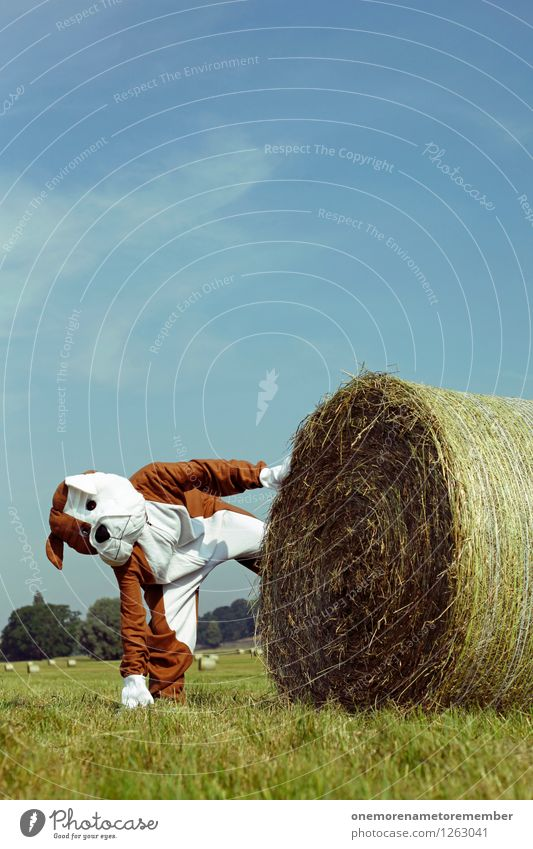 interruptus Kunst Kunstwerk Abenteuer ästhetisch Strohballen Hund Kostüm Hundeschnauze Hundeblick Hundeauge Dogge urinieren Freude Spaßvogel spaßig