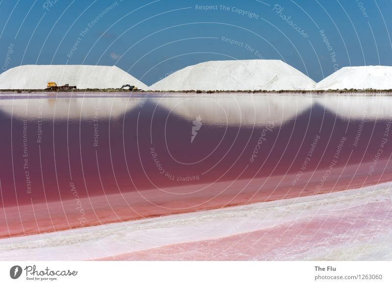 Das Salz der Erde blau Wasser weiß rot rosa ästhetisch Ernährung fantastisch Europa einzigartig Schönes Wetter Frankreich Kristalle Kochsalz Algen