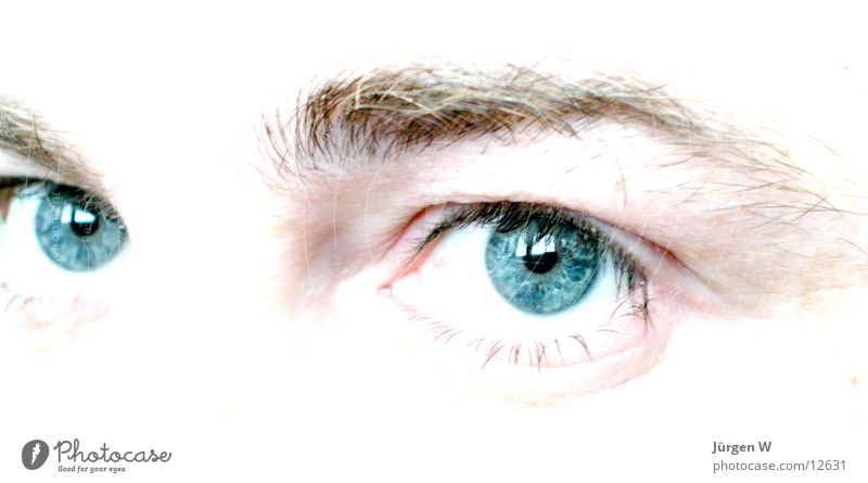 Seitenblick Pupille Fototechnik Auge Blick blau Mensch Regenbogenhaut hell eyes view blue humans pupil brightly