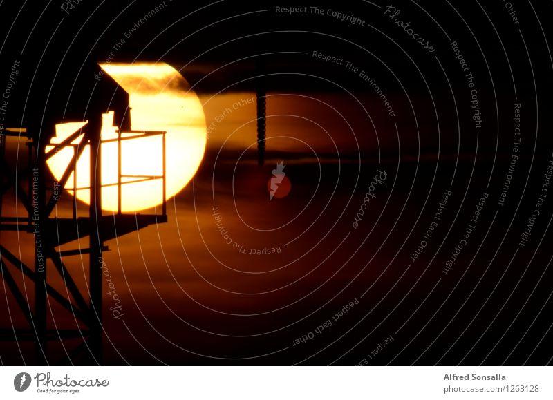 Our sun Landschaft Luft Himmel Wolken Horizont Sonne Sonnenaufgang Sonnenuntergang Sommer Wind Stadtrand authentisch Ferne natürlich braun gelb schwarz weiß