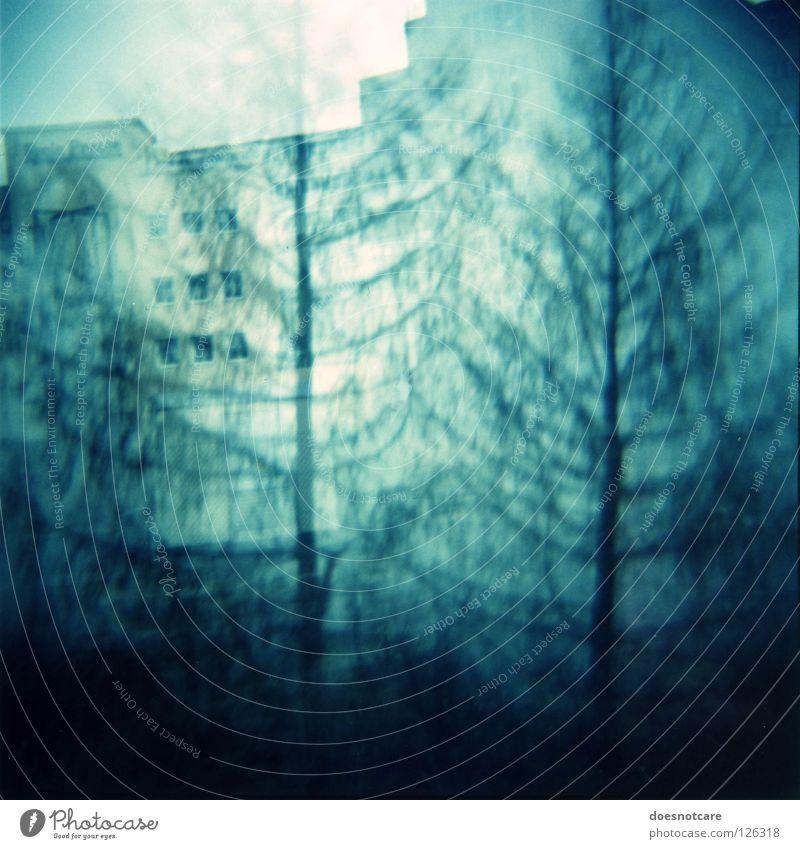 Ghost Spruces & Bleak House. Haus Baum Gebäude gruselig Geisterhaus Doppelbelichtung unheimlich verfallen Diana+ Gespenstfichte spukhaft Lomografie