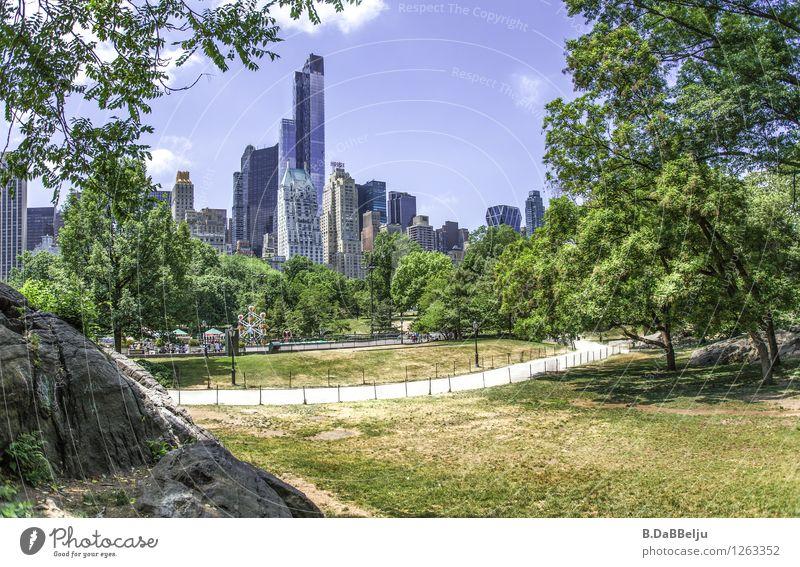 Central Park NY Ferien & Urlaub & Reisen Tourismus Sightseeing Städtereise Sommer Stadt Skyline Hochhaus groß Kontrast Manhattan USA New York City Liegewiese