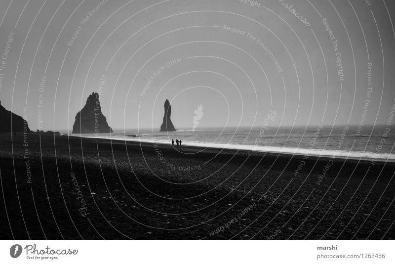 Vik Natur Landschaft Küste Strand Bucht Meer Insel Stimmung dunkel Island Reisefotografie schwarz Nebel Wetter Mensch grau Schwarzweißfoto Außenaufnahme Tag
