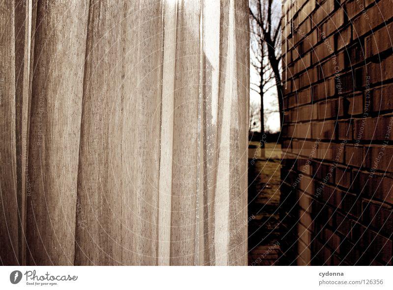 Im Verborgenen Vorhang Gardine Licht Fenster Fensterscheibe Sichtschutz Einsamkeit Mauer eng Aussicht Umgebung Wohnung zurückziehen Ferne gefangen unfähig