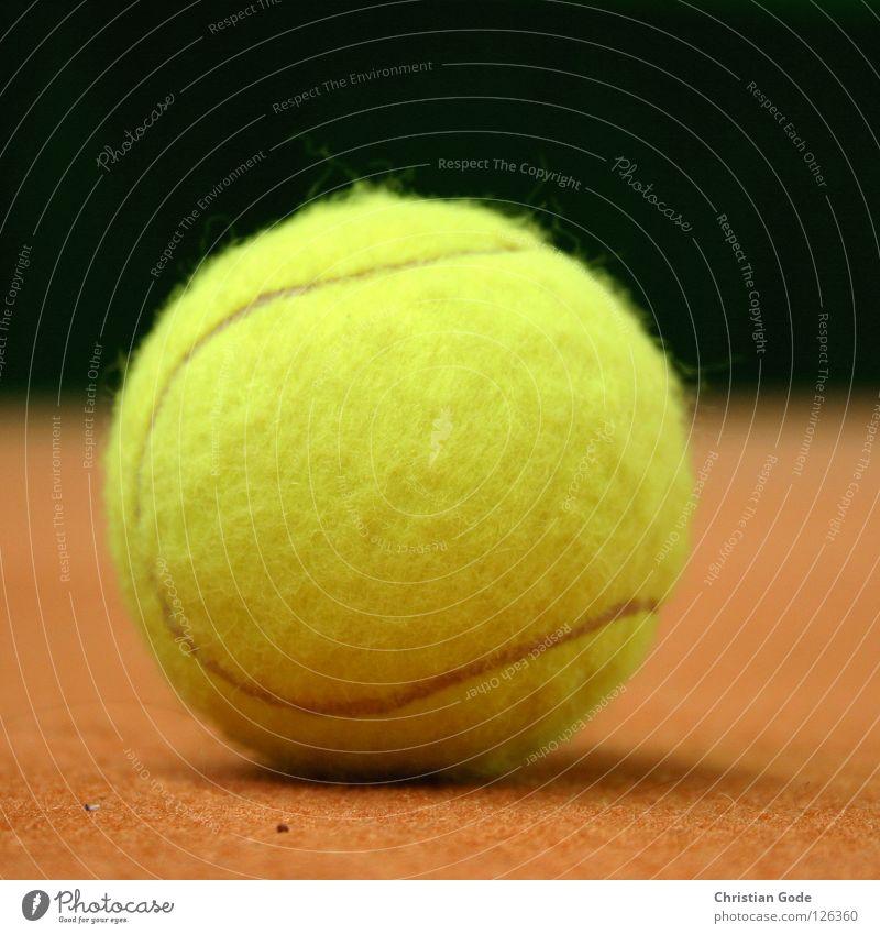 Planet grün weiß Winter gelb Sport Spielen springen Linie orange Freizeit & Hobby Geschwindigkeit Ball Netz Lagerhalle Teppich