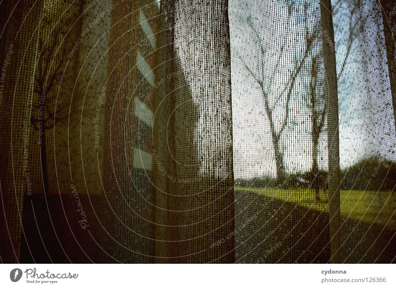 Wann ist es leicht? Einsamkeit Ferne Fenster Leben Gefühle Mauer Traurigkeit Wohnung Glas Angst Häusliches Leben Perspektive Dekoration & Verzierung Aussicht