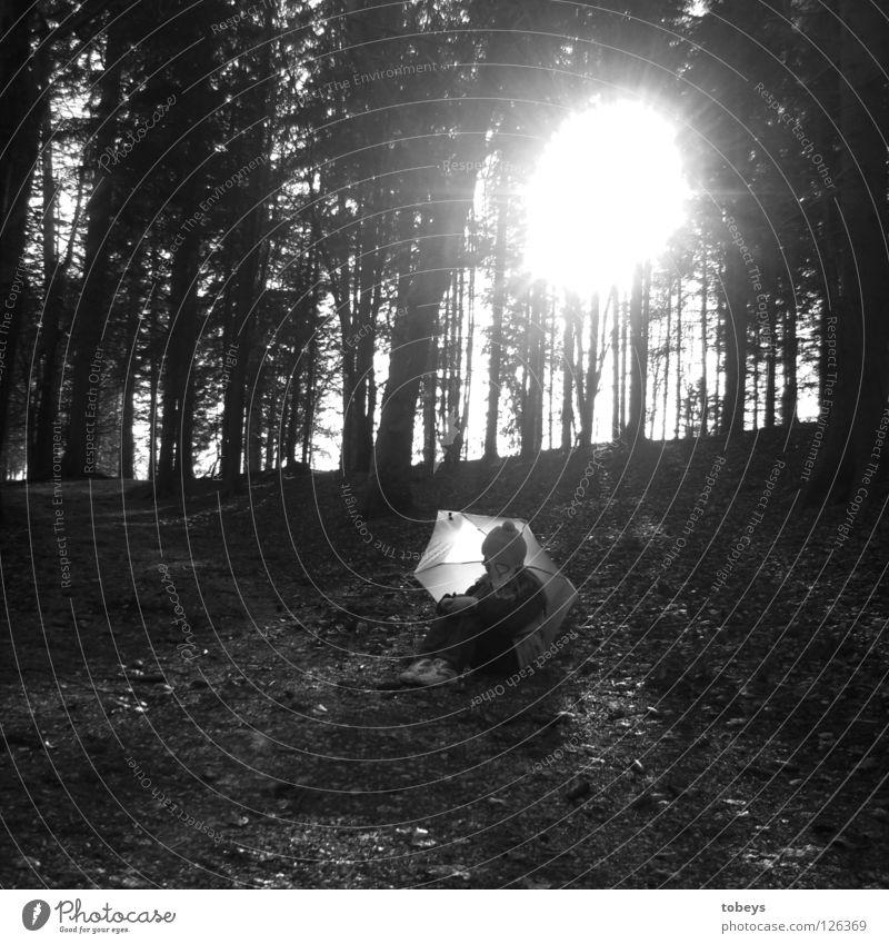 """""""Das Licht brennt ein Loch in den Tag"""" Freizeit & Hobby Ferien & Urlaub & Reisen Sonne Winter wandern Wald Regenschirm hocken sitzen dunkel Waldrand Spaziergang"""