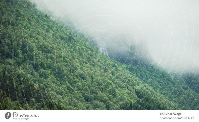 Water falls Umwelt Natur Landschaft Pflanze Wolken Gewitterwolken Sommer Herbst Wetter schlechtes Wetter Regen Baum Wald Urwald Berge u. Gebirge Fluss