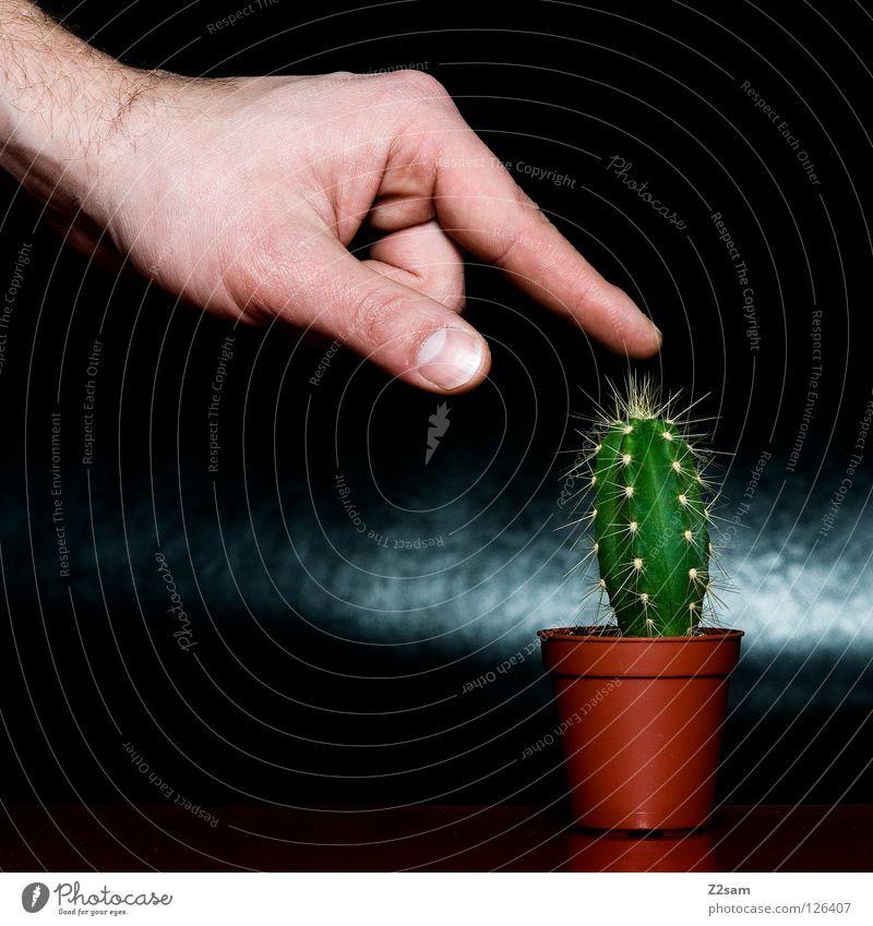 ich tu´s Mensch Natur Hand grün Pflanze rot schwarz dunkel braun Angst lustig glänzend Finger verrückt Tisch Spitze