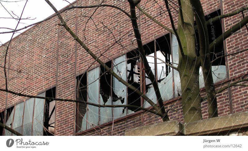 ziemlich kaputt Gebäude verfallen Mauer Fenster Industriefotografie Architektur Lagerhalle Glas builing window glass broken
