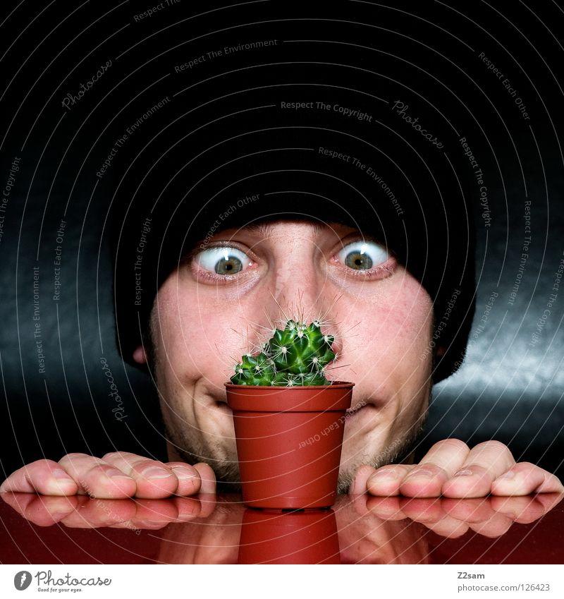 wachs doch!!!!!!!!! Wachstum Blick Mütze schwarz Bart Kaktus Mann Pflanze rot Selbstportrait Tisch verkehrt lustig verrückt Lücke glänzend dunkel Hand Finger