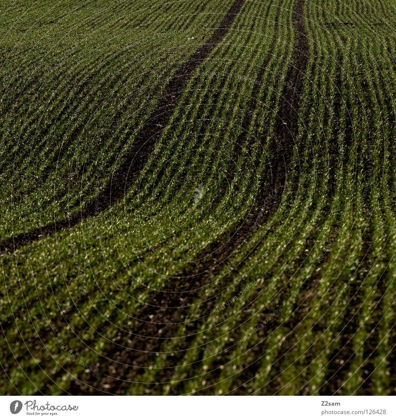 agrarkunst Landwirtschaft Feld Wiese 2 Wellen graphisch schwarz dunkel Quadrat Reifenspuren parallel Erde Sand argrar Spuren Wege & Pfade Bogen Linie reduzieren