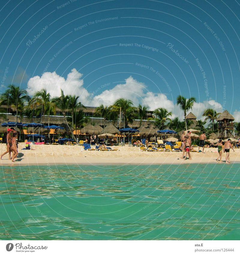 strandtreiben pt.3 Mensch Himmel Mann Natur blau Wasser Ferien & Urlaub & Reisen Baum Pflanze Meer Strand Freude Farbe Wolken Erholung Ferne