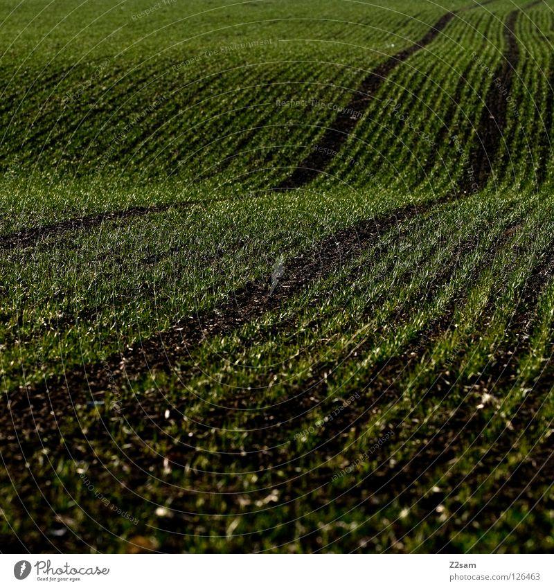 agrarkunst || schwarz Wiese dunkel Wege & Pfade 2 Linie Wellen Feld einfach Spuren Landwirtschaft Quadrat parallel Bogen graphisch Reifenspuren