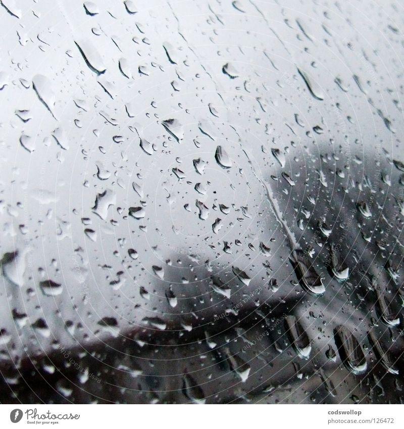 last sunday i gave you my umbrella... Wasser Winter Regen Wetter nass trist Klima Langeweile Sonntag Gummistiefel Flut entladen Überschwemmung armselig