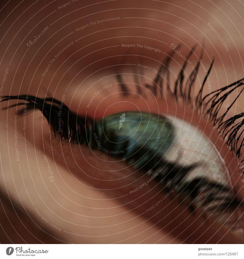 Augenblick Frau blau grün schön schwarz Auge feminin Schminke Wimpern Kosmetik Regenbogenhaut Makroaufnahme geschminkt