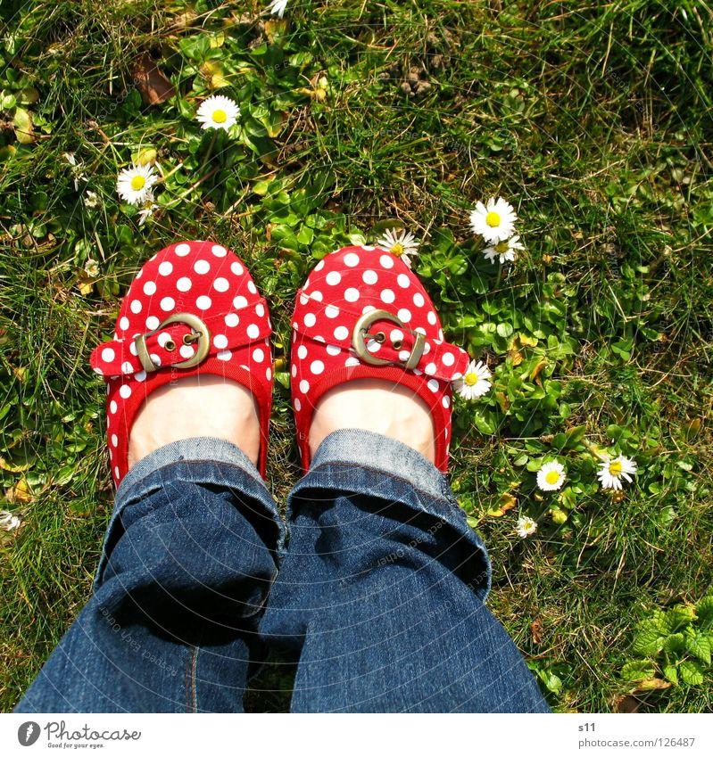In Her Shoes Haut Frau Erwachsene Fuß Natur Pflanze Frühling Blume Gras Blüte Wiese Bekleidung Hose Jeanshose Schuhe blau grün rot weiß gehorsam Punkt gepunktet